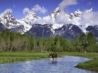 Grand Teton National Park....Must see sights in Wyoming | Great Places to Travel - Things To Do - Best Places to Vacation