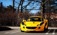 #1862961, lotus category - Images for Desktop: lotus picture