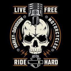 Harley Davidson News Harley Davidson Tattoos, Harley Davidson Logo, Classic Harley Davidson, Harley Davidson Chopper, Harley Davidson Motorcycles, Triumph Motorcycles, Custom Motorcycles, Vintage Logo, Biker Quotes