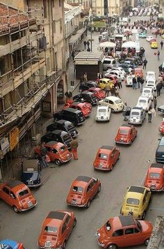 Vintage Fiats in Roma