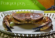 Pourquoi pas .... ??: Tourteau / crabe - cuisson et fond