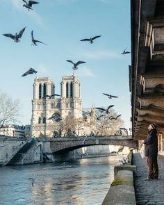 Frankreich NIY-Pano Bild Bilder auf Leinwand Notre Dame Paris