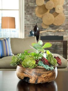 Try Your Green Thumb - Steal This Look: Budget-Savvy Living Room Fixes  on HGTV  Succulent Centerpieces