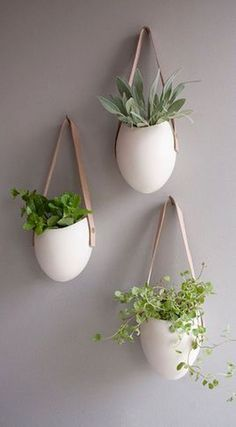 Wall Option hanging succulents straight across the wall in a horizontal line) - white ceramic + leather strap and light and polish to a dark wall - plants add element of movement and softness to a space wall decor Unique Air Plant Vessels Hanging Succulents, Hanging Planters, Planter Pots, Planter Ideas, Ceramic Planters, Hanging Herbs, Succulent Planters, Diy Hanging, Hanging Gardens