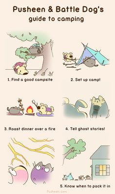 Camping: The Guide! ...