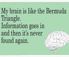 My brain is like the Bermuda Triangle.  Information goes in and this it's never found again.