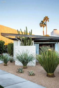 Mid-century architecture: Let's get inspired by the best mid-century modern architecture examples in Palm Springs, California! Mid Century Landscaping, Front Yard Landscaping, Landscaping Ideas, Hillside Landscaping, Backyard Ideas, Dessert Landscaping, Hydrangea Landscaping, Farmhouse Landscaping, Driveway Landscaping