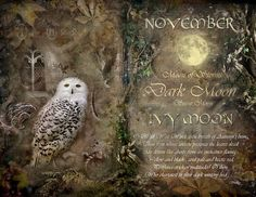"Book of Shadows Moon: ""November: Ivy Moon,"" by Angie Latham. It makes a lovely Moon page for a Book of Shadows. Paranormal, Tarot, Dark Moon, Moon Magic, Sabbats, Book Of Shadows, Months In A Year, Samhain, Occult"