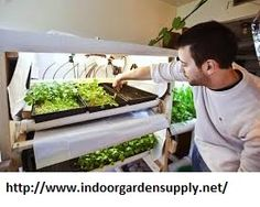 hydroponics glenwood springs