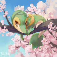RileyKitty - Digital Artist   DeviantArt Pokemon W, First Pokemon, Black Pokemon, Pokemon Special, Pokemon Memes, Pokemon Fan Art, Pokemon Stuff, Grass Type Pokemon, Pokemon Painting