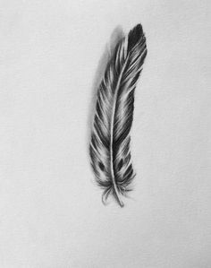 Original charcoal drawing of Light As a Feather 8X10 by Villekula