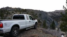 Super duty in the forest
