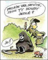 VTÍPKY Jokes, Lol, Humor, Comics, Funny, Mushrooms, Stupid, Meme, Design