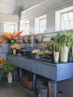 potting room. if we buy, my dream is to convert the downstairs to one big mudroom/potting area/laundry room.