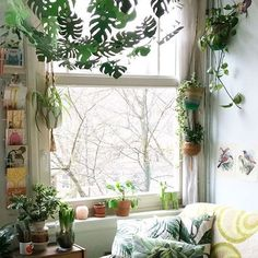 Refreshing beginning to the weekend: @marysevanliere welcome to #houseplantclub