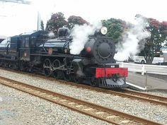 Steam Train NZ