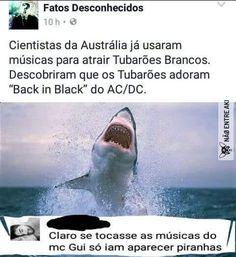 huehuehue- verdade :)