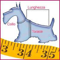 taglie abbigliamento cani