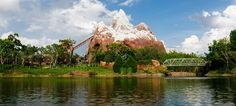 Expedition Everest™