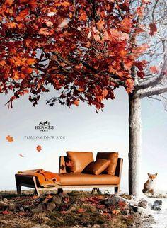 Smartologie: Hermès Fall/Winter 2012 Ad Campaign