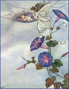Vintage Fairy Illustration—Morning Glory Baby—Ida Outhwaite