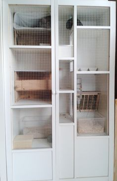 Genius Ikea Hack: Ikea Expedit Unit --> clean, modern, cozy chinchilla home. (edges protected from chewing by metal pieces)