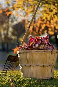 ritual of fall