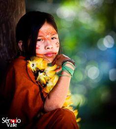 Os Ashaninka somam aproximadamente 70 mil pessoas, sendo a maioria habitante de aldeias em território peruano. No Brasil, as aldeias se localizam nas proximidades dos Rios Envira, Amônia e Riozinho.