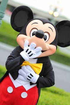 Disney World Halloween, Walt Disney World, Disney Pins, Disney Love, Mickey Mouse And Friends, Minnie Mouse, Disney Aesthetic, Tokyo Disney Resort, Phineas And Ferb