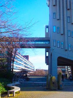 University of Leeds campus in the sun