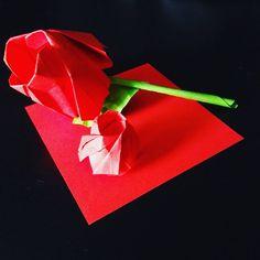 "Gefällt 15 Mal, 1 Kommentare - エリサ (@ylieschen) auf Instagram: ""a very small Rose, it is out 8x8cm/3,14x3,14inch paper [#origami #rose #small #ylieschenorigami]"""