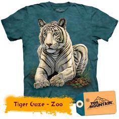 Tiger Gaze