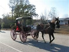 Horse An Buggy Images In 1800's - - Yahoo Image Search Results