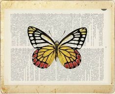 butterfly - vintage red yellow butterfly printed on old dictionary page via Etsy