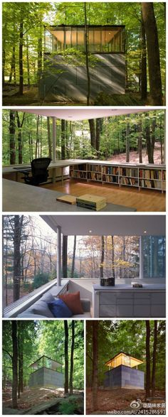 forest library/study room- awesome!