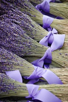 bunches of lavender. that or lilac would be a different bouquet for a wedding. Dried Lavender Flowers, Lavender Bouquet, Lavender Blue, Lavender Fields, Lavender Bridesmaid, Bridesmaid Bouquets, Bridesmaids, French Lavender, Lavender Garden