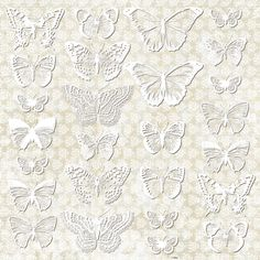 http://uhkgallery.pl/index.php?p401,butterfly-effect-efekt-motyla