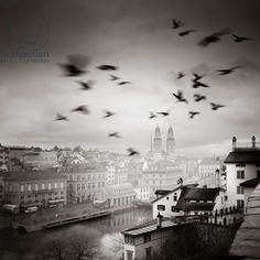 Lindenhof View, Zurich, Switzerland, 2013 (b/w photo) / Photo © Ronny Behnert / Bridgeman Images