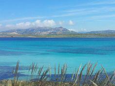 Acqua di Sardegna Stintinese 2