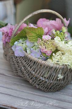 delightful flora