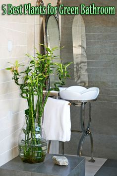 5 Best Plants for Green Bathroom. Bathrooms tend to be darker, but if you're lucky and have plenty of natural daylight, splurge on a beautiful blooming azalea or gardenia. Most houseplants are generally easy to care for, and the environment is easier to control than outdoors. Be careful: once you start with green bathrooms, it's hard to stop!