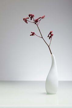 Henk Beaurain Flower Photography, Ikebana, Ceramic Pottery, Bonsai, Vases, Ceramics, Flowers, Home Decor, Ceramica