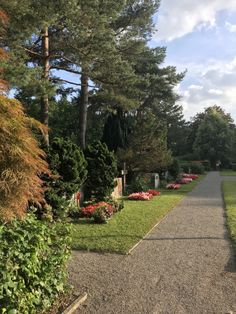 Friedhof Sihlfeld, a beautiful park kin #zurich   #travel #switzerland #thelazyfactory