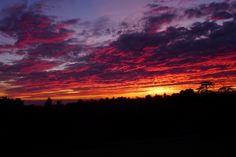 Beautiful January sunset