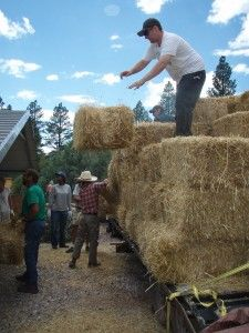 "There are a lot of things to consider when buying straw bales for your construction project. Here's a bullet point list of the absolute ""must haves."""