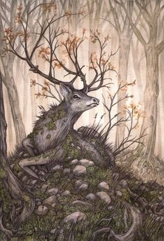 easy paintings 'The Hart of the Forest' by Adam Oehlers Fantasy Creatures, Mythical Creatures, Art And Illustration, Forest Art, The Forest, Deer Art, Spirited Art, Fairytale Art, Wow Art
