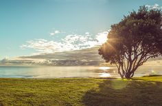 Beautiful view from outside of our Beachfront Villas - taken by PushingUpPixels