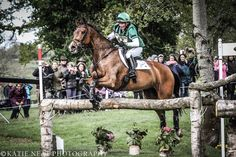 Mary King at Badminton International Horse Trials 2014 (C) Katie Neat Photography.