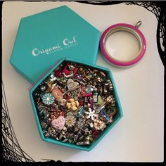 Origami Owl Online Jewelry Bar games   Guess how many charms in the locket box. Large locket shown for size comparison.    Charm count 165.