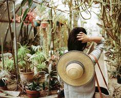 love plants.